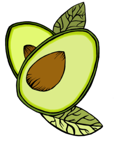 avocado label design in colour