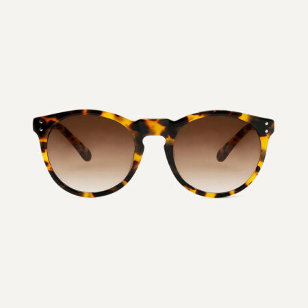 Pala Asha Sunglasses in Sunflower